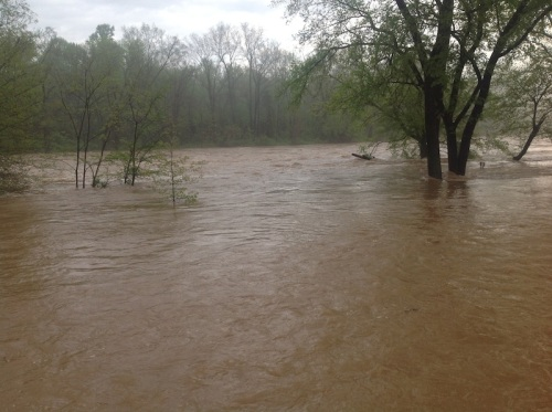 rappahannock in flood