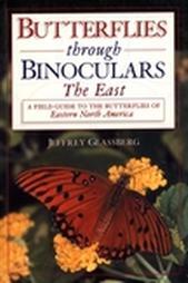 Butterflies_through_binoculars
