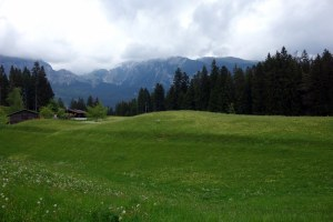 meadow, first, mountains