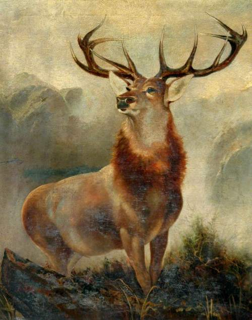 Ford, James, active 19th C; Stag at Bay (Monarch of the Glen)