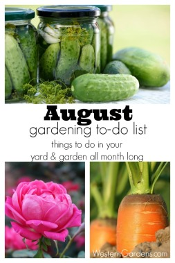 August-Gardening-To-Do-List-pin